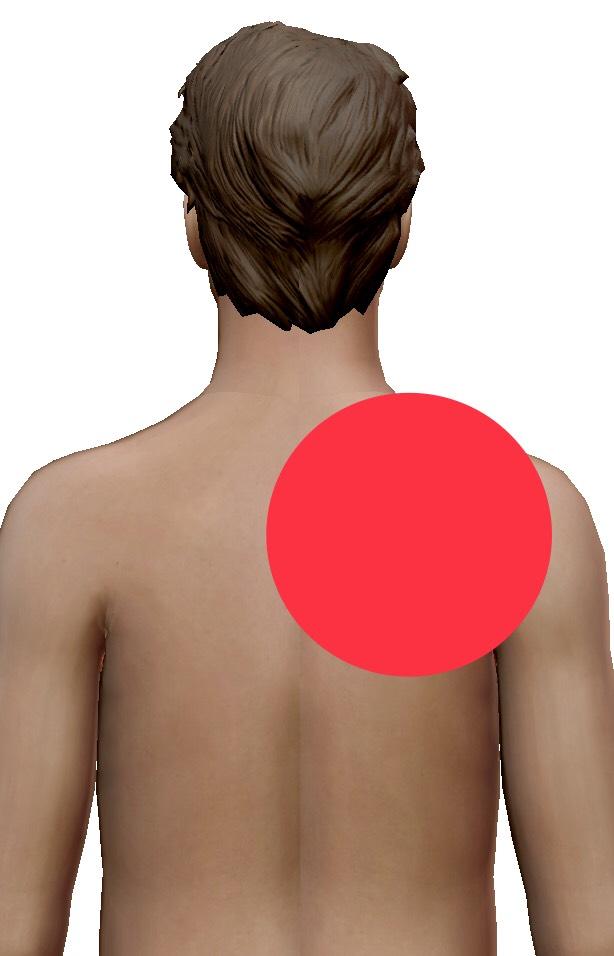 右側 背中 の 痛み